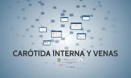 CARÓTIDA INTERNA Y VENAS