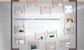 INTEGRACION DE LA PREVENCION DE RIESGOS