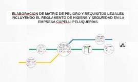Copy of ELABORACION DE MATRIZ DE PELIGRO Y REQUISITOS LEGALES INCLUY