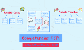 Competencias TSEI