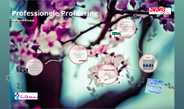 Copy of Professionele Profilering NW