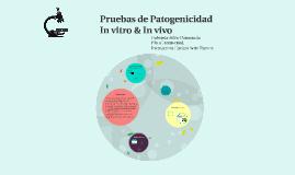 Pruebas de Patogenicidad in vivo/vitro