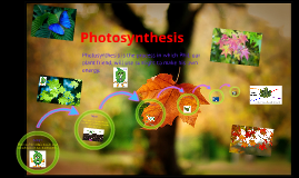 Copy of photosynthesis prezi