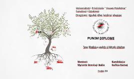 Copy of Lektyra shkollore