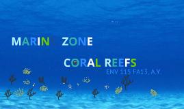 Marine Zone Presentation