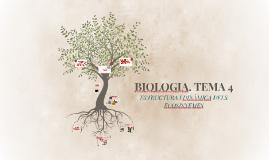 BIOLOGIA. TEMA 4