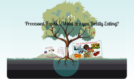 Copy of Processed Foods Lesson Plan