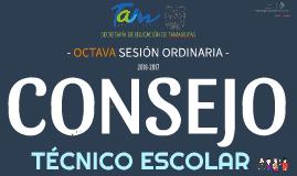 C.T.E. 16-17: Octava sesión ordinaria