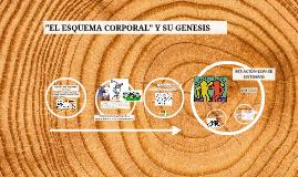 "Copy of EL ESQUEMA CORPORAL"""