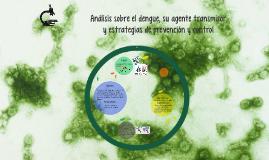 Análisis sobre el dengue, su agente transmisor y estrategias
