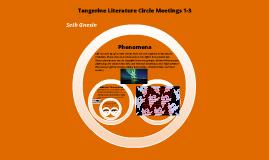 Tangerine Lit Circle 1-3