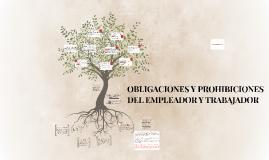 Copy of OBLIGACIONES Y PROHIBICIONES DEL EMPLEADOR Y TRABAJADOR