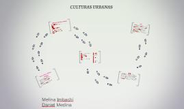 ¿Qué son las culturas urbanas?