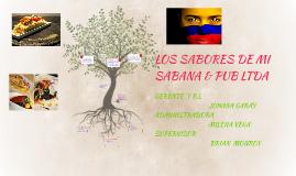 LOS SABORES DE MI SABANA & PUB