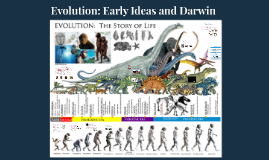 Evolution: Early Ideas