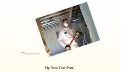 My First Test Prezi