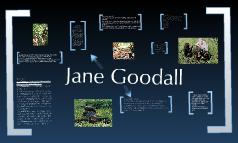 Anthro - Jane Goodall