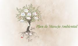 Copy of Plan de Manejo Ambiental (Curtiembre Torrente)