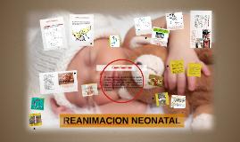 Copy of REANIMACION NEONATAL