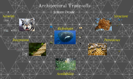 Architectural Trade-offs