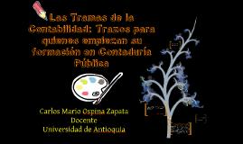 LAS TRAMAS DE LA CONTABILIDAD - CARLOS M. OSPINA