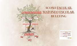 ACOSO ESCOLAR, MATONEO ESCOLAR, BULLYING