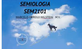 SEMIOLOGIA SISTEMA RESPIRATORIO 2017