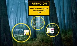 Copy of ATENCIÓN