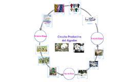 El Circuito Productivo del Algodón