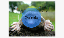 Copy of Chemistry - Higher - Unit 1 - The Mole