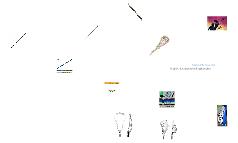 The Lacrose Stick