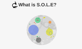 What is S.O.L.E?