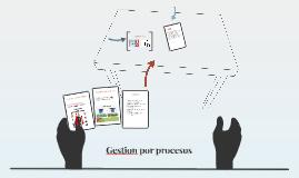 Gestion por procesos