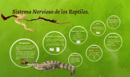 Copy of Sistema Nervioso de los Reptiles.