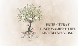 Copy of ESTRUCTURA Y FUNCIONAMIENTO DEL SISTEMA NERVIOSO