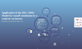 Application of the HEC-HMS Model for runoff simulation in a