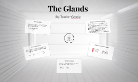The Glands