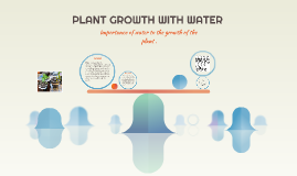 PLANT GROWTH WITH WATER