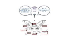 Anestesia, RCP y TEP