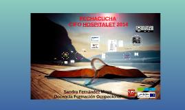 Pechacucha CIFO Hospitalet 2014