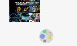 Principios y práctica de la Microscopía Electrónica
