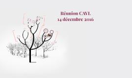 Réunion CAVL