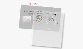 NIC 10
