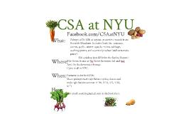 CSA at NYU