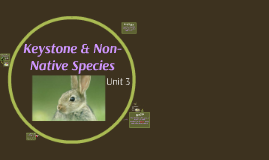Unit 3: Keystone & Non-Native Species