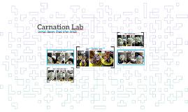 Carnation Lab