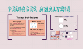 Copy of PEDIGREE ANALYSIS