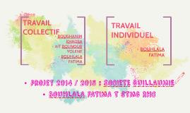 projet 2014 / 2015 : SOCIETE GUILLAUMIE