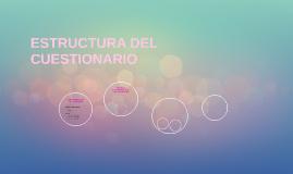 ESTRUCTURA DEL CUESTIONARIO