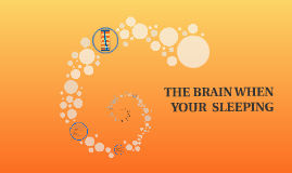 THE BRAIN WHEN SLEEPING